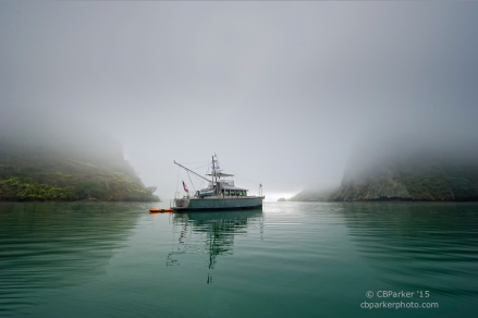 Misty Anchorage - Whangaroa, New Zealand 2012